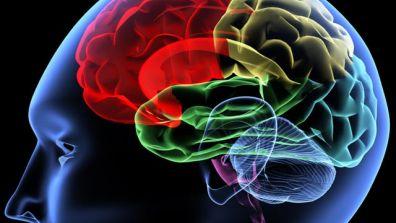 http://www.joeniekrofoundation.com/aneurysms/surgeons-treat-brain-aneurysms-through-the-nose/attachment/brain%20istock%20640/