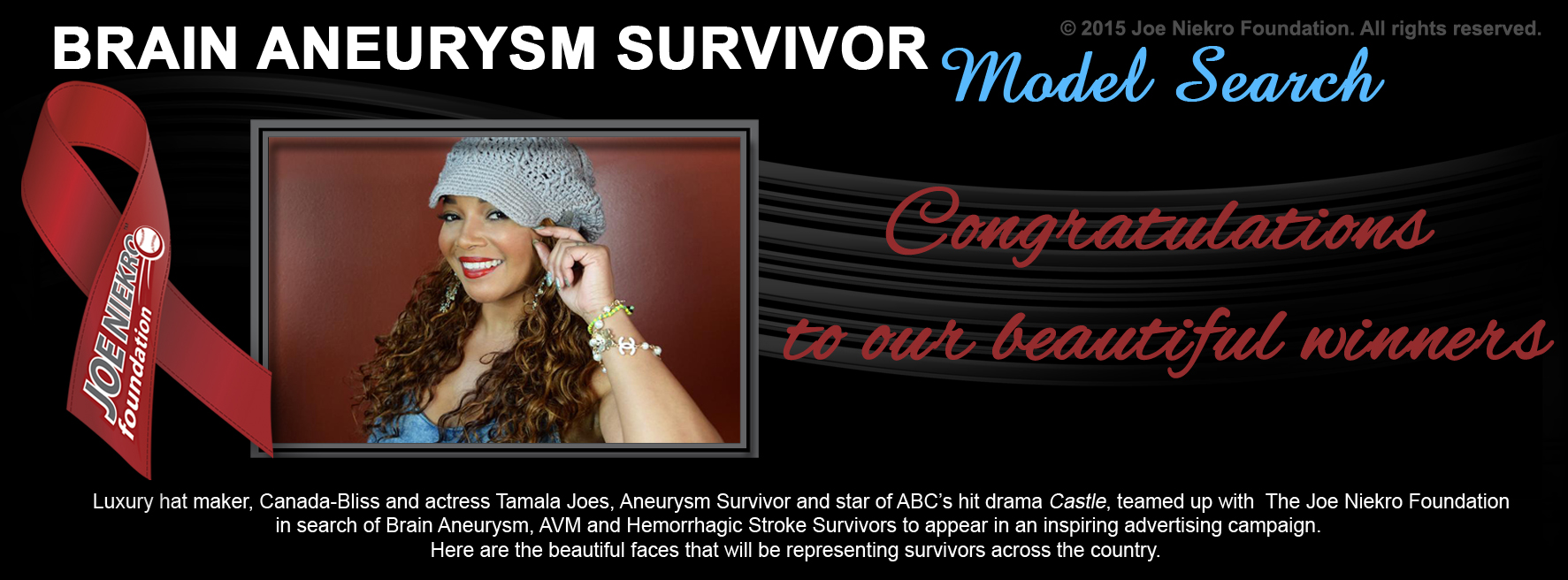 Joe Niekro Foundation - Survivor Model Search