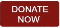 http://www.joeniekrofoundation.com/about-us/mission-statement/attachment/donate-now/