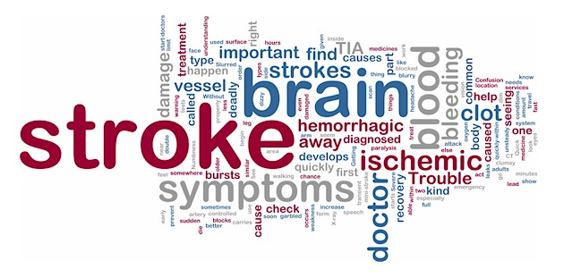 http://www.joeniekrofoundation.com/stroke-2/may-is-stroke-awareness-month/