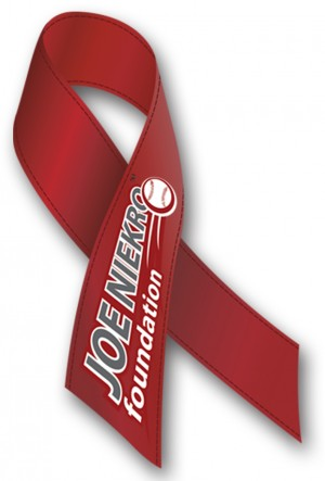 http://www.joeniekrofoundation.com/aneurysms/jnf-working-to-elevate-brain-aneurysm-awareness/attachment/ribbon-2/