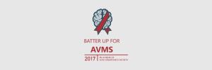 Batter Up For AVMS Twitter Cover Photo