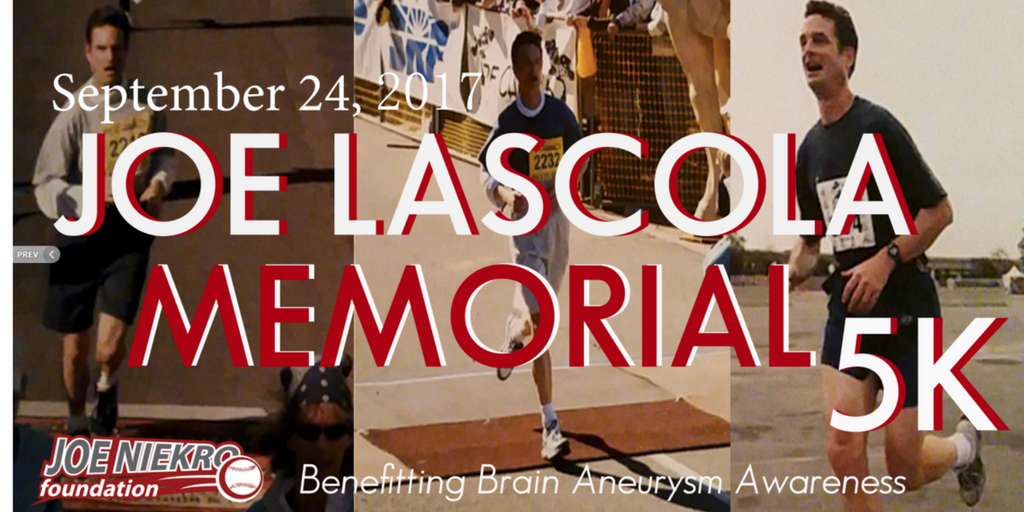 http://www.joeniekrofoundation.com/events/past-events/pastevents2017/joe-lascola-memorial-walk/attachment/untitled-design-6/
