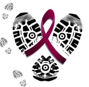 https://www.joeniekrofoundation.com/aneurysms/walk-the-walk-and-make-a-difference/