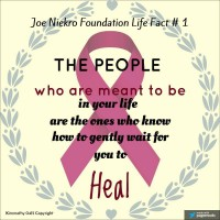 https://www.joeniekrofoundation.com/aneurysms/the-world-as-we-see-it/attachment/1526527_10208059758881121_8080642560998311422_n/