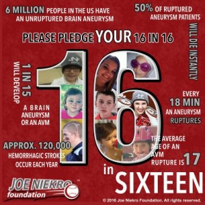 https://www.joeniekrofoundation.com/aneurysms/16-in-sixteen/