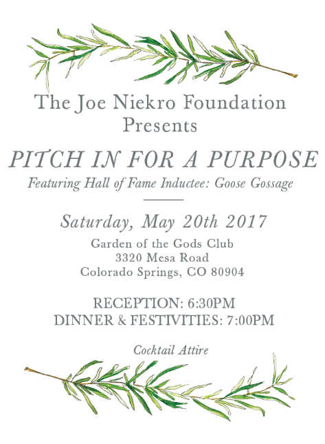 https://www.joeniekrofoundation.com/events/past-events/pastevents2017/pitch-in-for-a-purpose/attachment/evite-option-3-2/