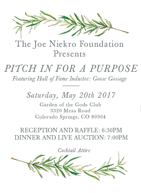 https://www.joeniekrofoundation.com/past-events/pastevents2017/pitch-in-for-a-purpose/attachment/evite-option-3/